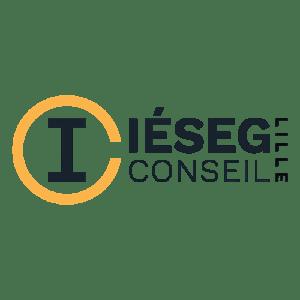 Logo IESEG IJC Partner